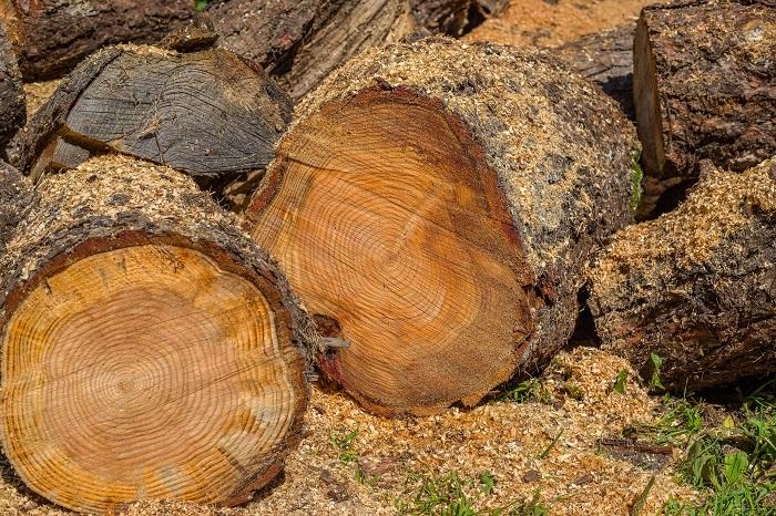 Kotol na drevo vykúri celý dom